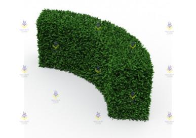 Зелёное ограждение полукруг