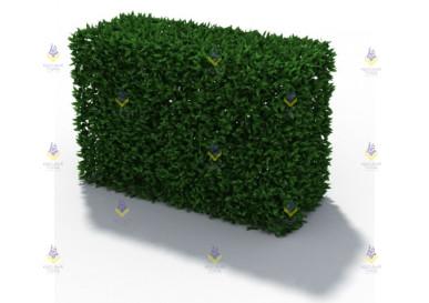 Зеленое ограждение